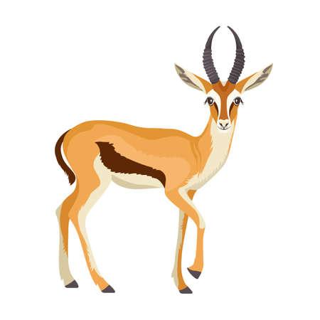 Gazelle or antelope with horn. Vektorové ilustrace