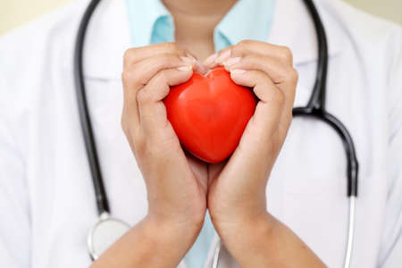 Female doctor holding a beautiful red heart shape Foto de archivo