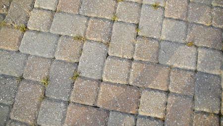 greys: Brick walk way with grass peeking through