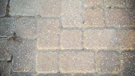 greys: Brick walk way close up in sun light
