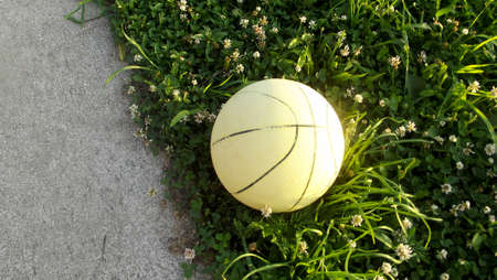 faded: Faded Basketball on Grass Stock Photo
