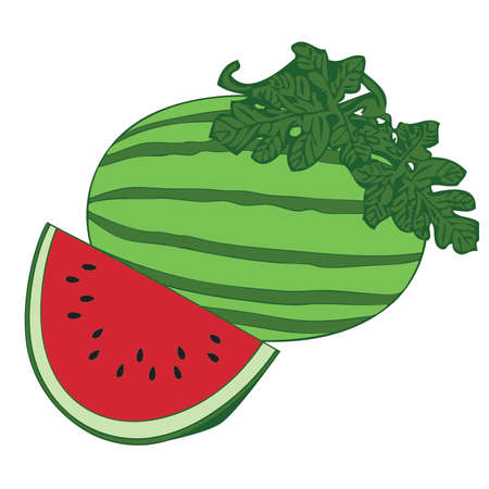 Watermelon with watermelon slice and leaves