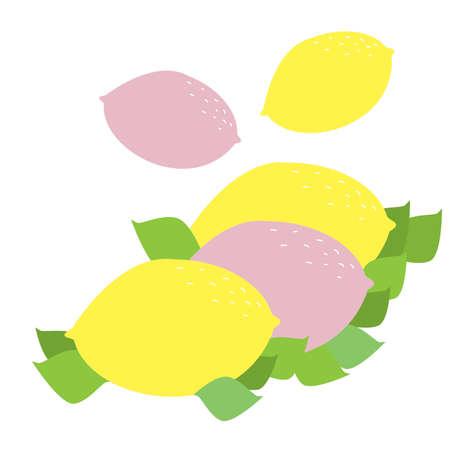 rind: Pink and Yellow Lemons Illustration