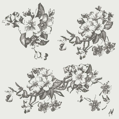 Vintage Pen and Ink Flowers
