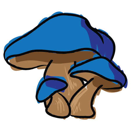 Hand Drawn Mushrooms, Blue