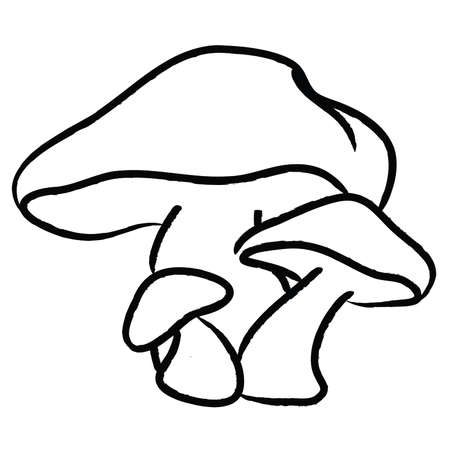 Hand Drawn Mushrooms, Black and white