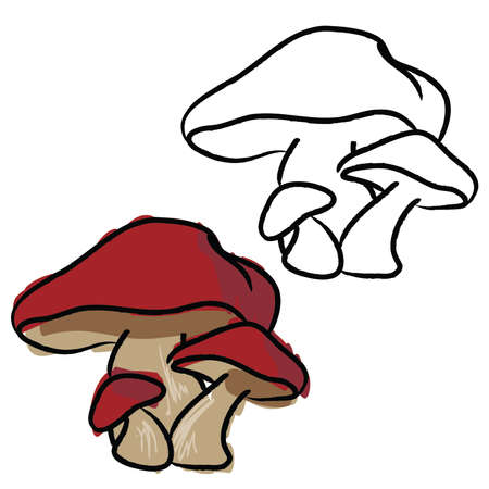 Hand Drawn Mushrooms, Red, and black and white