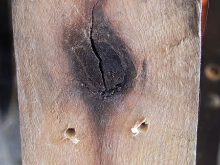 wood plank with dark knot and nail hols