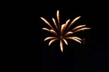 orange and white firework