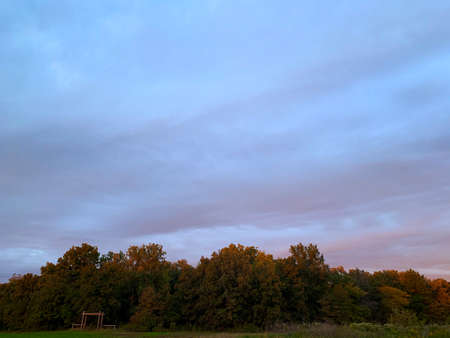 Pink and Blue Sunset over woodland