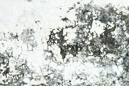 Grunge old cement Wall Background that is decayed and gritty  photo