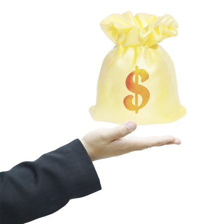 recive: money bag on businessman hand on white background