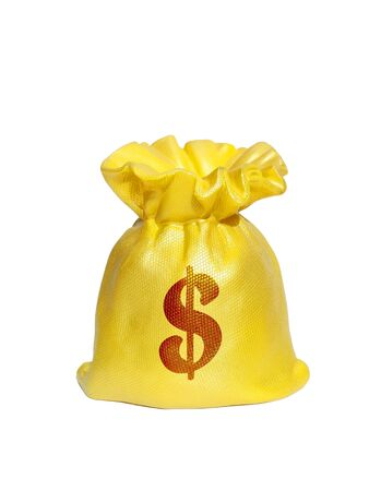 Money bag With Dollar Sign isolated on white background