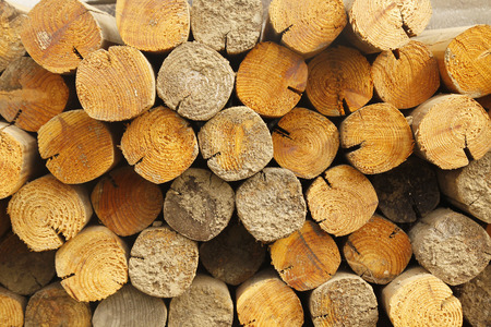 Photo of Stack of chopped firewood photo