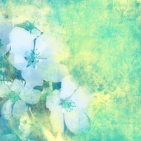 Flower vintage color background