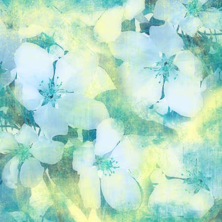 Flower vintage background photo