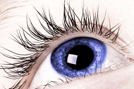 Macro blue eyes of the boy