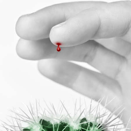 Finger with a blood drop pricked by cactus
