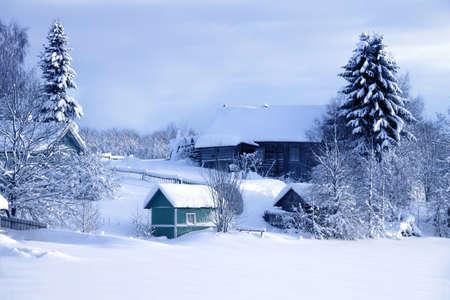 Snow winter in the village