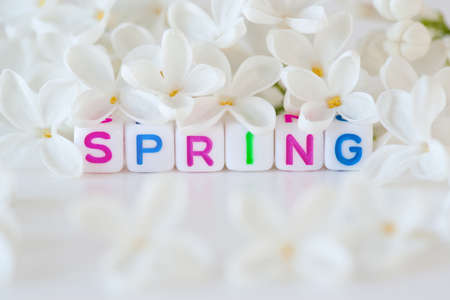 The word spring surrounding  flowers Stock Photo