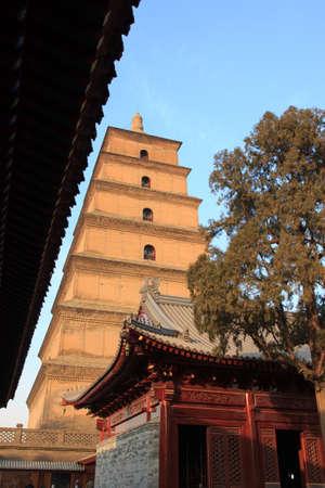 Giant goose wild pagoda