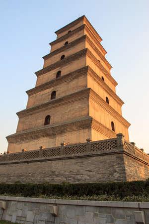 Giant goose wild pagoda Stock Photo - 25050313