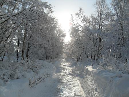 snow track Фото со стока