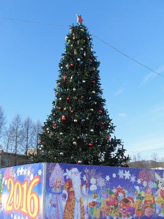 christmas tree Фото со стока - 50817728