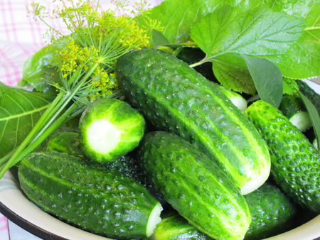Cucumbers for pickling. Cucumbers and spices - everything for pickling, set Фото со стока - 78100045