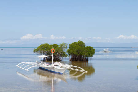 outrigger: Outrigger Boat Anchored in Shallows of Mangrove Vegetation on Sunny Day at Poblacion Beach, Panglao, Bohol, Philippines
