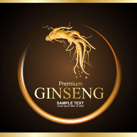 Ginseng premium Vecteur Vecteurs