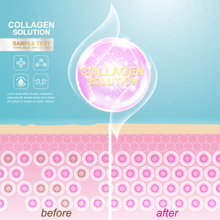 sections: Collagen Serum and Vitamin Background Concept Skin Care Cosmetic. Illustration