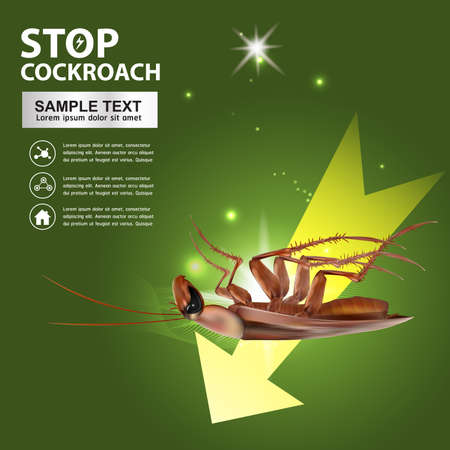 Stop Cockroach Vector Illustration