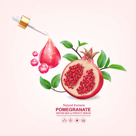 Pomegranate Serum Collagen and Vitamin for Skin Concept vector illustration.