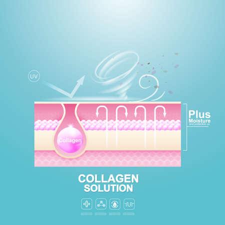 Protection Skin and Repairing or Collagen Serum and Vitamin Repair Skin.