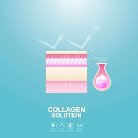 Bescherm huid en reparatie of collageen serum en vitamine reparatie huid. Vector Illustratie