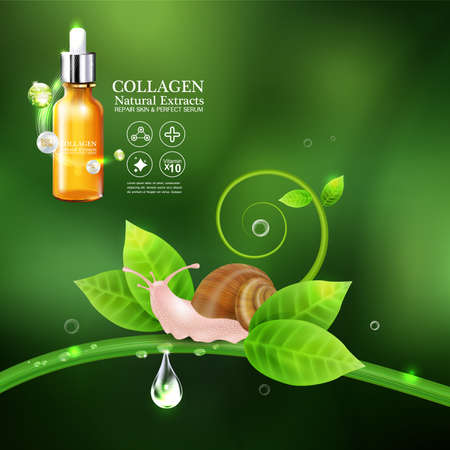 Collagen or Serum snail cosmetic packaging design Vector