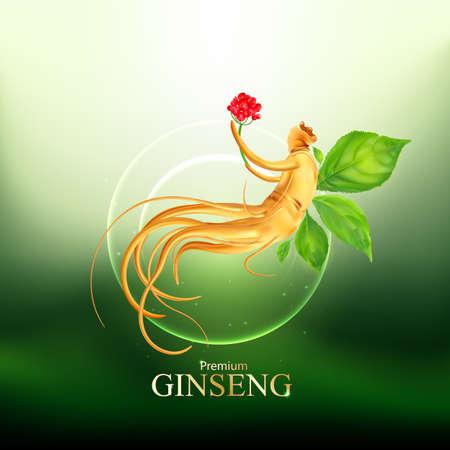 Ginseng Premium Vector Illustration