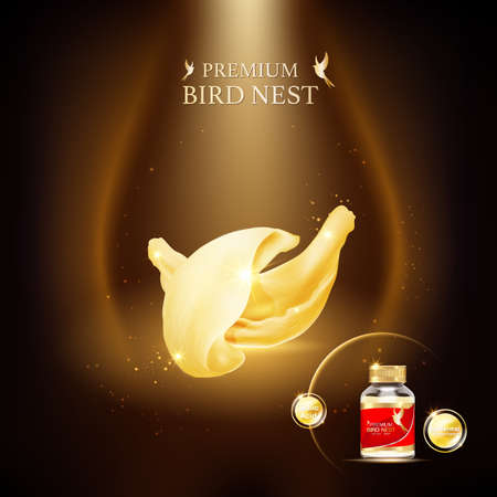 Bird Nest Premium background Concept Vector for Products.