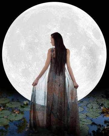 long night: Water fairy walking into the moon