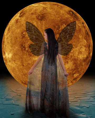magical fairy: Ice fairy in front of a Venus  Elements of this image furnished by NASA
