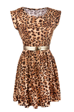 animal sexy: Animal print dress with golden belt isolated on white