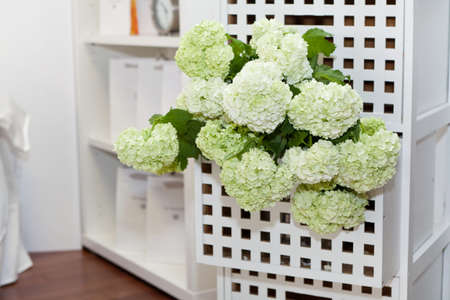 night table: Hydrangea in the night table drawer Stock Photo