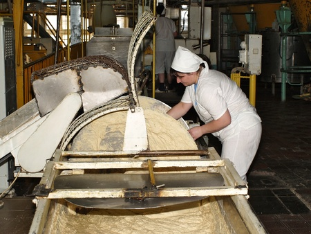 Manufacture of the dough for bread