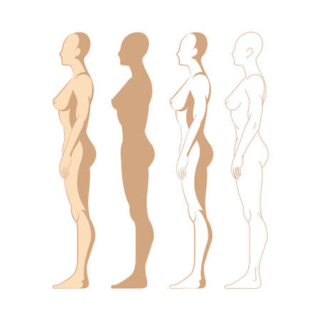 Female body. Hand drawn female body set. Woman body side view isolated vector illustration. Woman naked full length figure sketch drawing. Part of set.