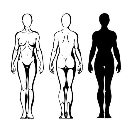 Female body. Hand drawn female body set. Woman body front and back view isolated vector illustration. Woman naked full length figure sketch drawing. Part of set.