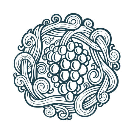 Grape and vine hand drawn vector illustration. Grapevine engraving style drawing. Part of set. 写真素材 - 151060880