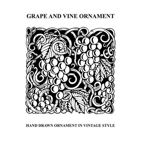 Grapes. Grape and vine engraving style hand drawn vector illustration. Grape and vine ornament. Part of set. 写真素材 - 151140959