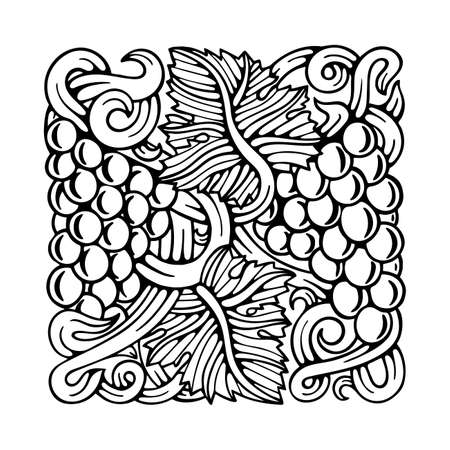Grapes. Grape and vine engraving style hand drawn vector illustration. Grape and vine ornament. Part of set. 写真素材 - 151140967