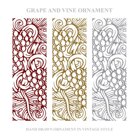 Grapes. Grape and vine engraving style hand drawn vector illustration. Grape and vine ornament. Wine theme grape and vine vintage style design. Part of set.  イラスト・ベクター素材